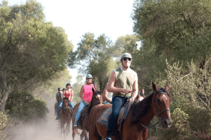 excursion with horses