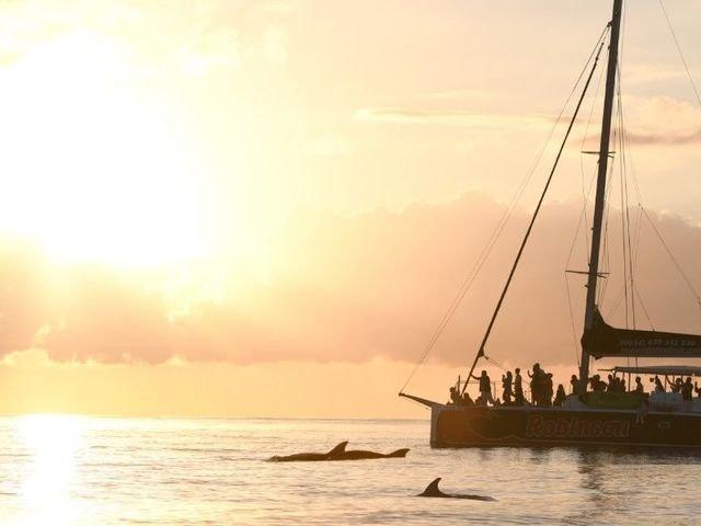 Boat and Catamaran trips
